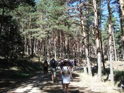 Entre el Puerto y Chorro de Navafría;rutas para caminar equipamiento para senderismo rutas senderis